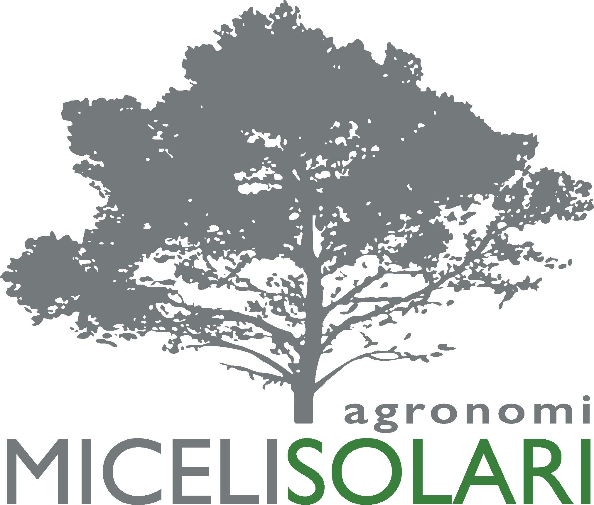 Miceli Solari Agronomi